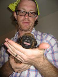 New puppy 008