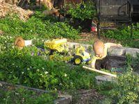Irrigation, canal adventure 034