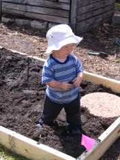 Putting_in_raised_beds_010