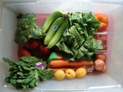 Producebox1