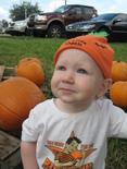 Pumpkin_patch_004