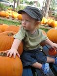 Pumpkin_patch_014