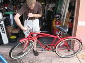 Javaplum_acorn_bike_091