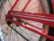 Javaplum_acorn_bike_092