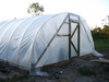 Beths_drive_and_hoop_house_ends_016