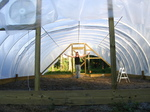 Plastic_on_the_hoop_house_019