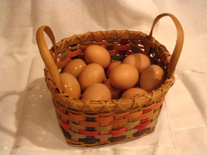 School_and_eggs_015