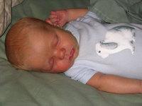 Sleepingwbunny