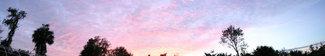 Sunset_pan_3