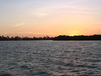Sunsetflyin1